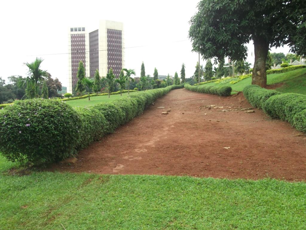 Cameroun En Marche
